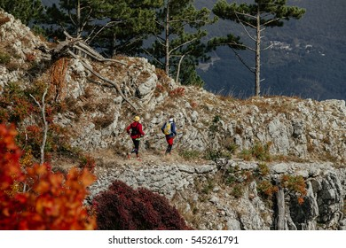 two athletes of skyrunners run on top of a mountain with walking poles