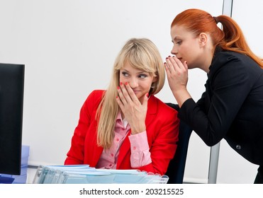 two attractive woman business colleagues working in office on computer