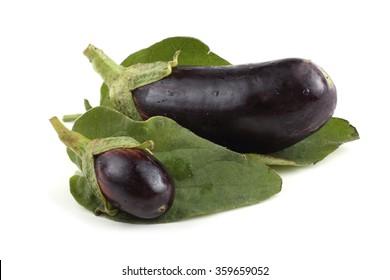 Two aubergines on leaves