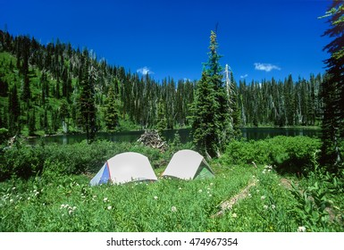 Two backpacking tents pitched next to a high mountain lake. Tents are surrounded by lush green vegetation and wildflowers. Big vivid blue sky with forested green mountains in this wilderness.