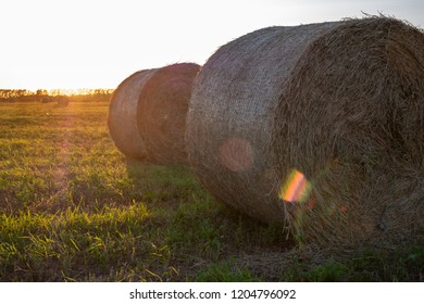 two bales of rolled pressed hay against the evening sky and sun glare on the lens, natural outdoor photography