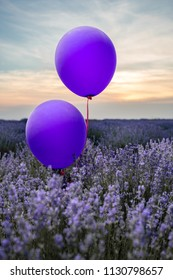 Two balloons in a lavender field.