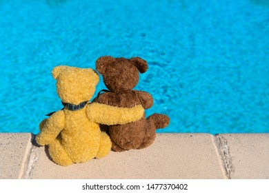 Two bears on vacation near swimming pool