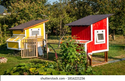Two beautiful chicken coops near a vegetable garden.