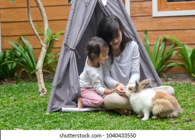 two beautiful family sitting in tent and feeding the rabbit