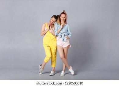 Two beautiful young sisters in stylish clothes are fooled posing in the studio. Beautiful stylish hipsters sisters happily behave against the gray wall background