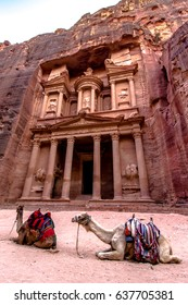 "Two bedouin camels in front of Al-Khazneh ""The Treasury""; one of the most elaborate temples in the ancient Arab Nabatean Kingdom city of Petra."