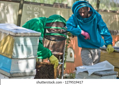 Two beekeepers in the apiary among the hives. Beekeeping training. A beekeeper in a green beekeeping suit pulls a frame from the hive.