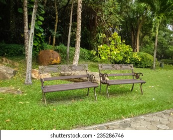 Two bench on park without people