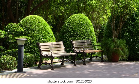 Two benches and green plants in formal garden