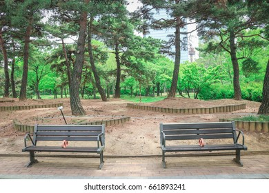 Two benches in Yeouido Park in Seoul, South Korea.