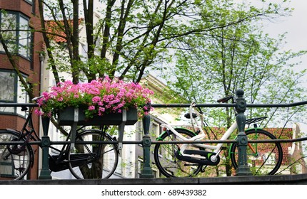 Two bikes chained with a flowering plant on a canal bridge in Amsterdam