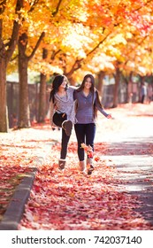 Two biracial teen girls walking together under bright red, orange and yellow maple tree, kicking colorful leaves. Ground is covered with fallen colorful leaves.