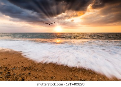 Two Birds Are Flying Into The Light of The Sun Rays as the Sun Sets on the Ocean Horizon