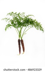 two black carrots against white background