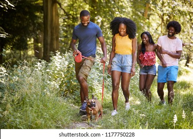 Two black couples walking with a dog in a forest