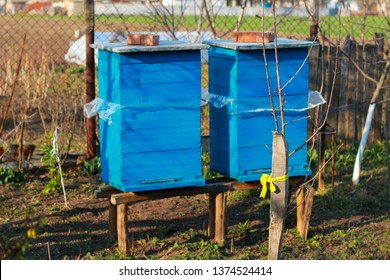 two blue hives rural scene