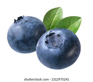 two blueberries with leaves