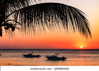 Two boats with a palm frond in front of the setting sun on Mauritius beach in the Indian Ocean