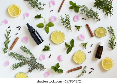 Two bottles of essential oil with a selection of herbs and fruits on a white background: peppermint, lime, lemon, melissa, thyme, rosemary, cinnamon, clove, thuja