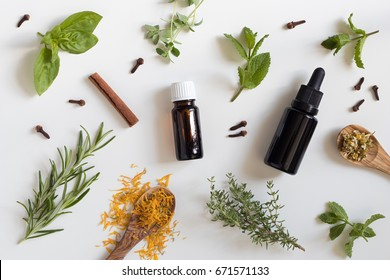 Two bottles of essential oil with a selection of herbs on a white background - peppermint, basil, thyme, rosemary, cinnamon, clove, oregano, chamomile, calendula