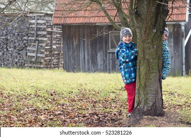 Two boys children playing in garden in autumn or fall, hiding behind a tree, shed and firewood in background.