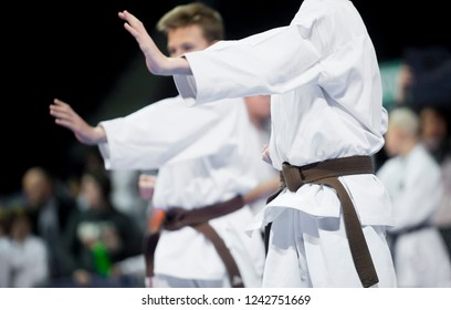 Two boys demonstrate martial arts working together.Concept of sport.