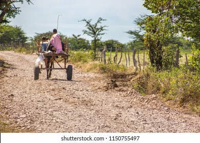 Two boys driving their carriage under and endless road. Just a poverty look from rural Honduras a beautiful country with very kindly people, Choluteca, Honduras