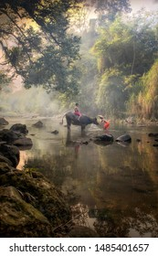 Two boys playing splashing water with buffalo at beautiful river in Bogor West Java Indonesia. 04 08 2019