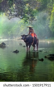Two boys with their buffalo at beautiful river in Bogor West Java Indonesia. 04 08 2019