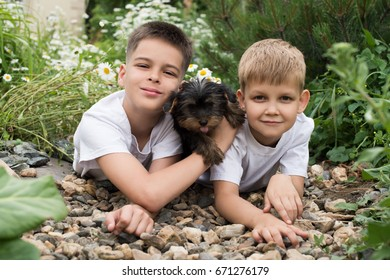 Two boys and their puppy lay among flowers