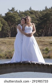 two brides on wooden bridge against forest background hold each other