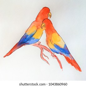 two bright parrots
