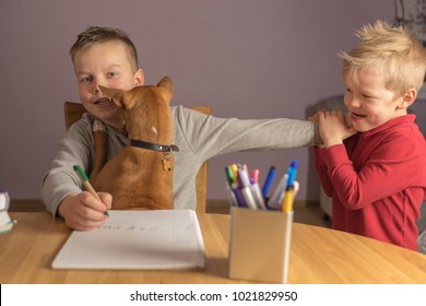 two brothers play with a dog and do homework