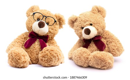 Two brown teddy bear with eye glasses isolated on white background.