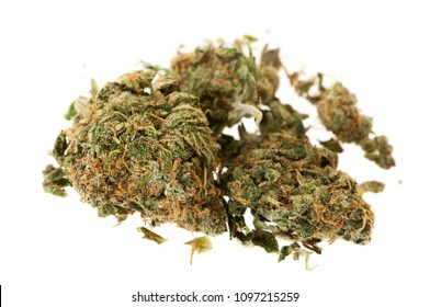 Two buds of herbal marijuana