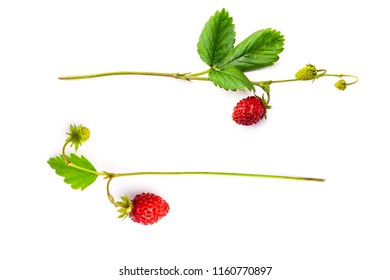 Two bunches of the red strawberry, view from top