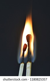 Two burning matches against a black background look like a couple cuddling and being intimate with each other - concept symbolizing fiery love