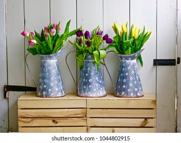 Two bushel baskets support three pitchers each with a different color of  long stemmed tulips.