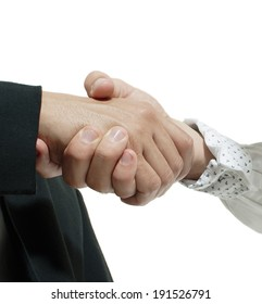 Two business executives shaking hands in agreement