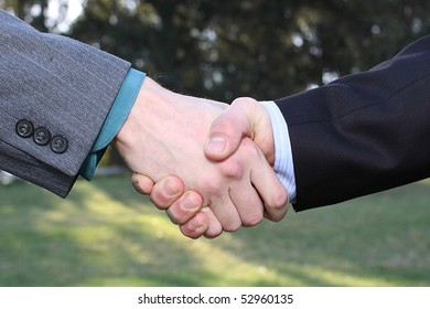 Two businessmen hands handshake on nature background