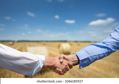 Two businessmen shaking hands in golden field with rolled bales in background. Agribusiness concept
