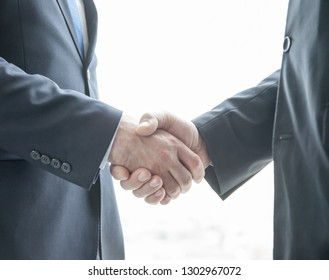 Two businessmen shaking hands standing by windows in office
