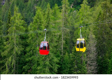 Two cabins of the chairlift in operation, and in the background the green pine forest