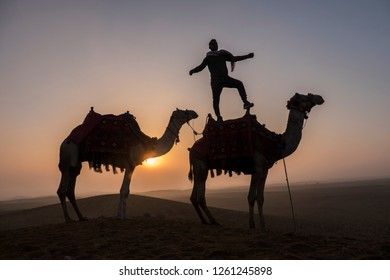 Two camels in the desert at sunrise with a men on the back