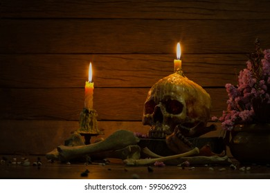 Two candles light and pile of old skull on dried timber and pile of straw in Halloween dark night / Still life, Select focus and dim light