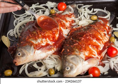 Two carp fishes prepared to be cooked in the oven with tomatoes, olives onion pepper and bay leaf and over smeared with tomato sauce