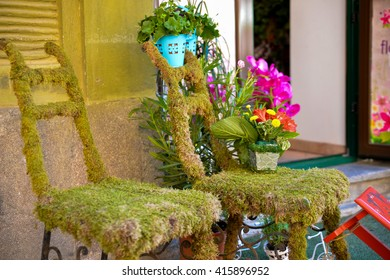 Two chairs covered with grass and a flower pot