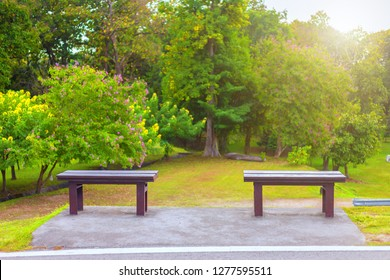 Two chairs on green grass at Park,vivid tone
