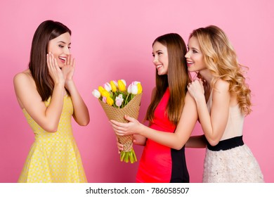 Two charming girls giving bouquet of colorful tulips to their friend who shocked, amazed, impressed, holding hands near cheeks, standing over pink background, 8-march, women's day